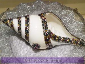 Conchiglie in Esposizione al Bangkok Seashell Museum